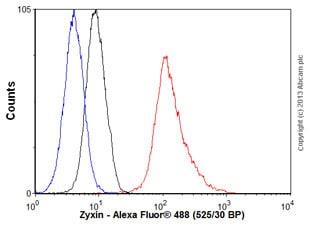 Flow Cytometry - Anti-Zyxin antibody [EPR4302] (ab109316)