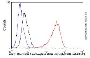 Flow Cytometry - Anti-Acetyl Coenzyme A Carboxylase antibody [EPR4971] (ab109368)