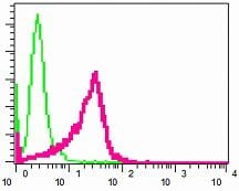 Flow Cytometry - Anti-Ferritin Light Chain antibody [EPR5260] (ab109373)