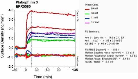 OI-RD Scanning - Anti-Plakophilin 3 antibody [EPR5560] (ab109441)