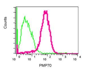 Flow Cytometry - Anti-PMP70 antibody [EPR5614] (ab109448)