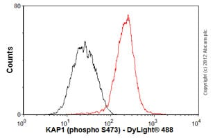 Flow Cytometry - Anti-KAP1 antibody [EPR5249] (ab109545)