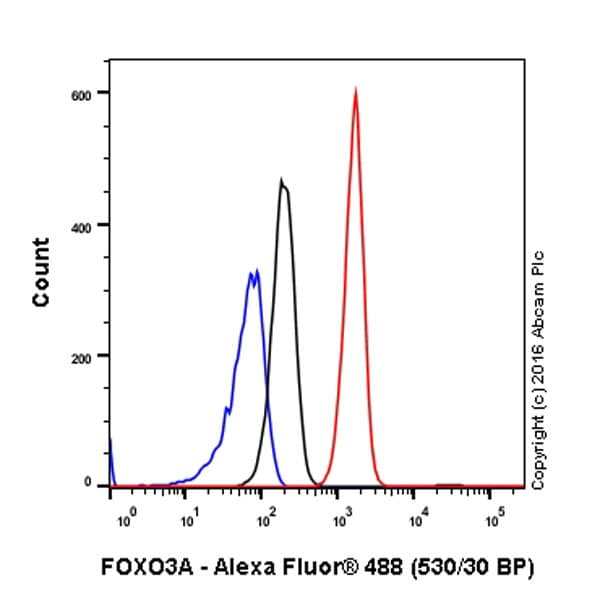 Flow Cytometry - Anti-FOXO3A antibody [EPR1950] (ab109629)
