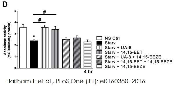 Mitochondrial aconitase enzymatic activities were measured using ab109712
