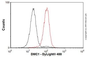 Flow Cytometry - Anti-DMC1 antibody [2H12/4] (ab11054)