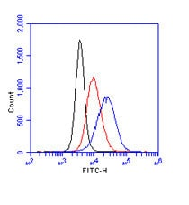 Flow Cytometry - Anti-gamma H2A.X (phospho S139) antibody (ab11174)