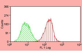 Flow Cytometry - Anti-EGFR antibody [ICR10] (FITC) (ab11400)