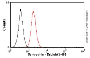 Flow Cytometry - Anti-Syntrophin antibody [1351] (ab11425)