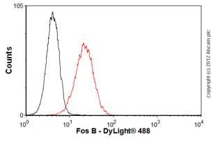 Flow Cytometry - Anti-Fos B antibody [83B1138] (ab11959)