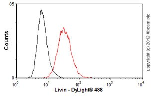 Flow Cytometry - Anti-Livin antibody [88C570] (ab11983)
