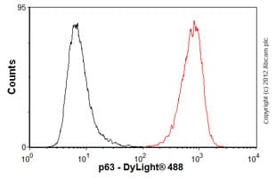 Flow Cytometry - Anti-p63 antibody [4E5] (ab110038)
