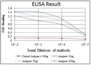 ELISA - Anti-p63 antibody [4E5] (ab110038)