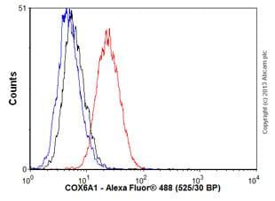 Flow Cytometry - Anti-COX6A1 antibody [14A3AD2BH4] (ab110265)