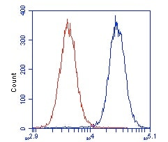 Flow Cytometry - Anti-VCP antibody [3E8DC11] (ab110308)