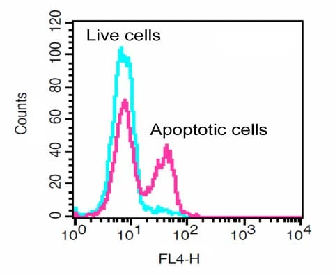 Flow Cytometry - Generic Caspase Activity Assay Kit (Fluorometric - Red) (ab112131)