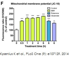 Mitochondrial membrane potential was measured using ab112134