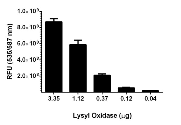 Functional Studies - Lysyl Oxidase Activity Assay Kit (Fluorometric) (ab112139)