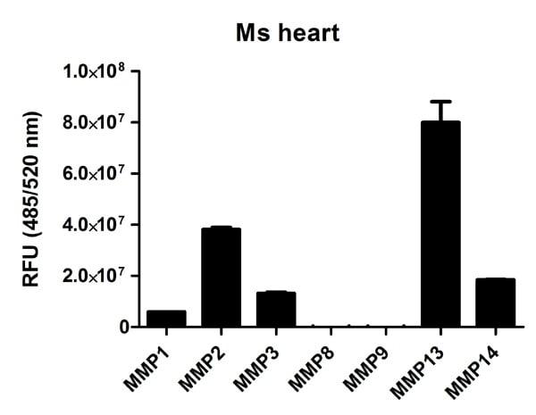 Functional Studies - MMP Activity Assay Kit (Fluorometric - Green) (ab112146)