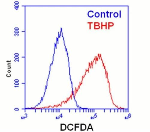 Flow Cytometry - DCFDA - Cellular Reactive Oxygen Species Detection Assay Kit  (ab113851)
