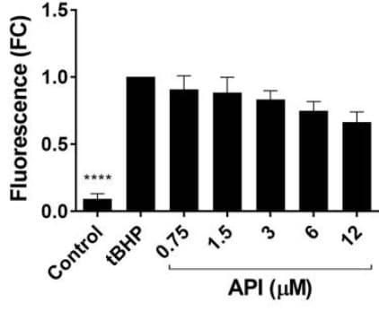 Reactive oxygen species (ROS) measured using the DCFDA assay