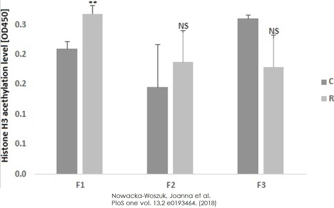 Functional Studies - Histone H3 Total Acetylation Detection Fast Kit (Colorimetric) (ab115124)