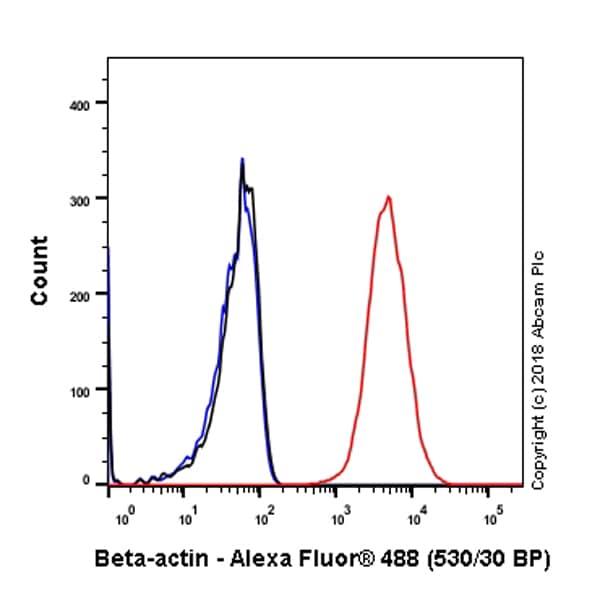 Flow Cytometry - Anti-beta Actin antibody [SP124] (ab115777)