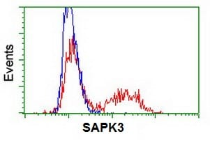 Flow Cytometry - Anti-MAPK 12 antibody [OTI10E1] (ab117985)