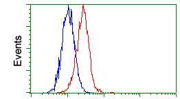 Flow Cytometry - Anti-Gankyrin antibody [OTI3F6] (ab118009)