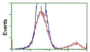 Flow Cytometry - Anti-MyD88 antibody [OTI1B4] (ab119048)