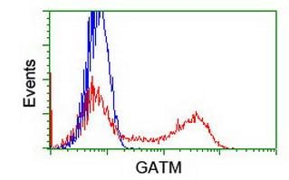 Flow Cytometry - Anti-GATM antibody [OTI1C9] (ab119269)