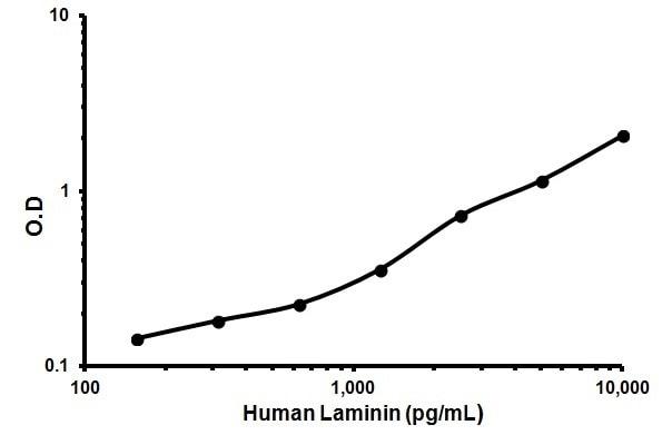 Human Laminin ELISA Kit (ab119599) | Abcam