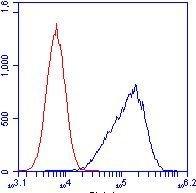 Flow Cytometry - Anti-ATP5C1 antibody [2A1AA11] (ab119686)