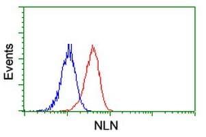 Flow Cytometry - Anti-NLN antibody [OTI1D6] (ab119802)