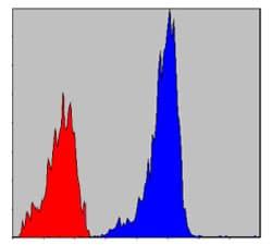 Flow Cytometry - Anti-Smad2 antibody [5G7] (ab119907)