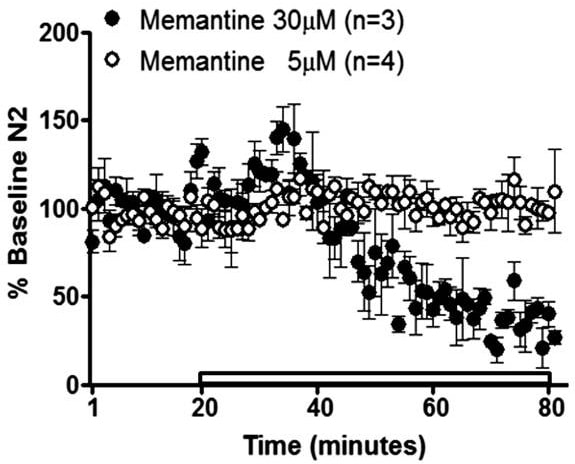 Functional Studies - Memantine hydrochloride, NMDA antagonist (ab120249)