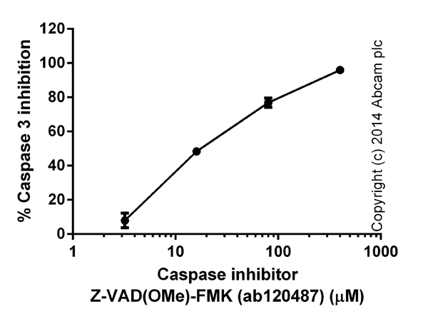 Functional Studies - Z-VAD(OMe)-FMK, Cell permeable, irreversible pan-caspase inhibitor (ab120487)
