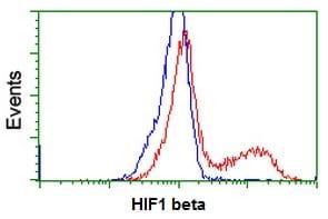 Flow Cytometry - Anti-HIF1 beta antibody [OTI1A1] (ab123853)