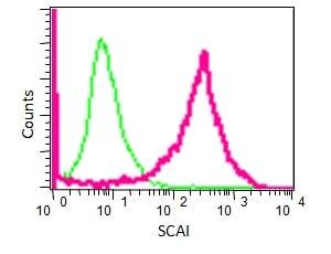 Flow Cytometry - Anti-SCAI antibody [EPR4128] (ab124688)