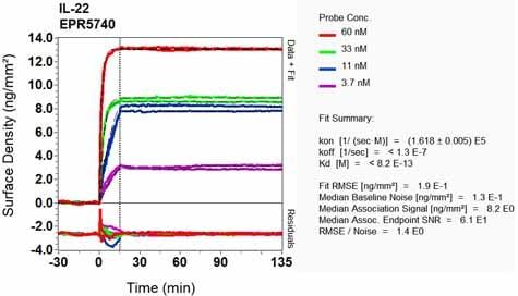 Other - Anti-IL-22 antibody [EPR5740] (ab124740)
