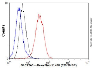 Flow Cytometry - Anti-SLC22A3/OCT3 antibody [EPR6630] (ab124826)