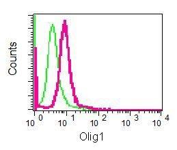 Flow Cytometry - Anti-Olig1 antibody [EPR6790] (ab124908)