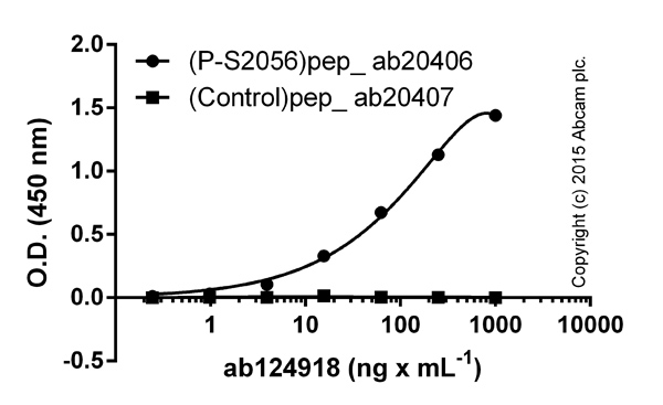 ELISA - Anti-DNA PKcs (phospho S2056) antibody [EPR5670] (ab124918)