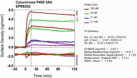 Other - Anti-Cytochrome P450 3A4/CYP3A4 antibody [EPR6202] (ab124921)