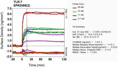 Other - Anti-TLR7 antibody [EPR2088(2)] (ab124928)