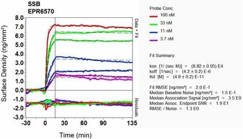 OI-RD Scanning - Anti-SSB antibody [EPR6570] (ab124932)