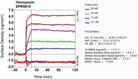 Other - Anti-Hemopexin antibody [EPR5610] (ab124935)