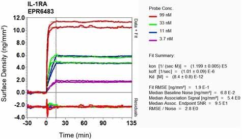 Other - Anti-IL-1RA antibody [EPR6483] (ab124962)