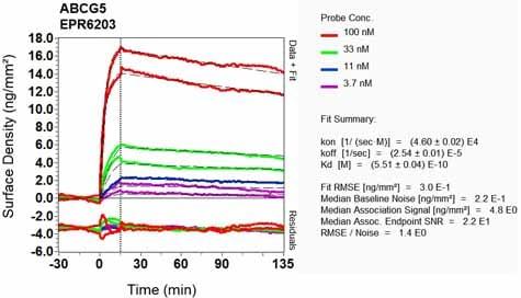 OI-RD Scanning - Anti-ABCG5 antibody [EPR6203] (ab124965)