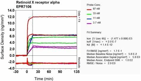 OI-RD Scanning - Anti-Retinoid X Receptor alpha/RXRA antibody [EPR7106] (ab125001)