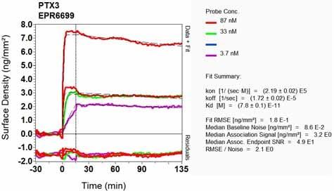OI-RD Scanning - Anti-Pentraxin 3/PTX3 antibody [EPR6699] (ab125007)